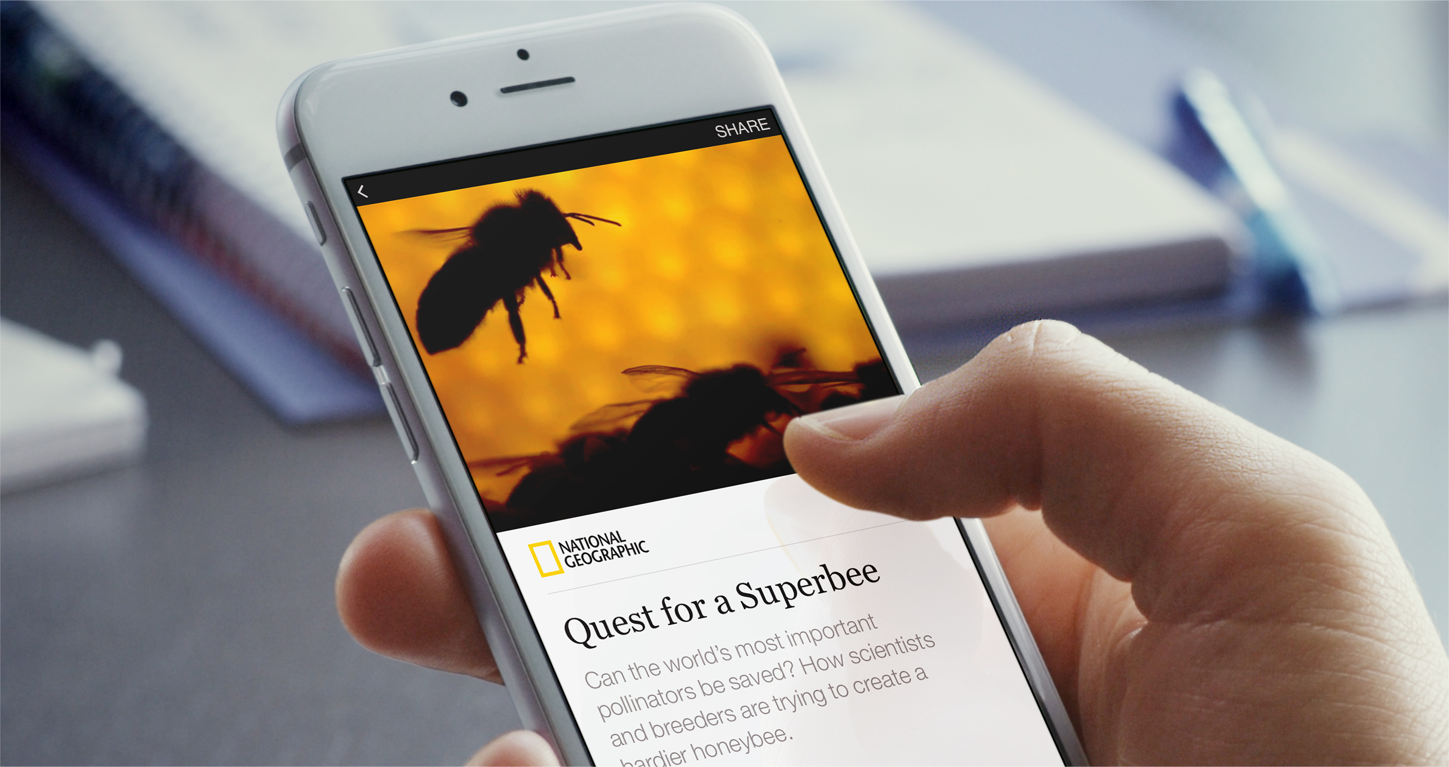 Instant articles. Źródło: facebook.com