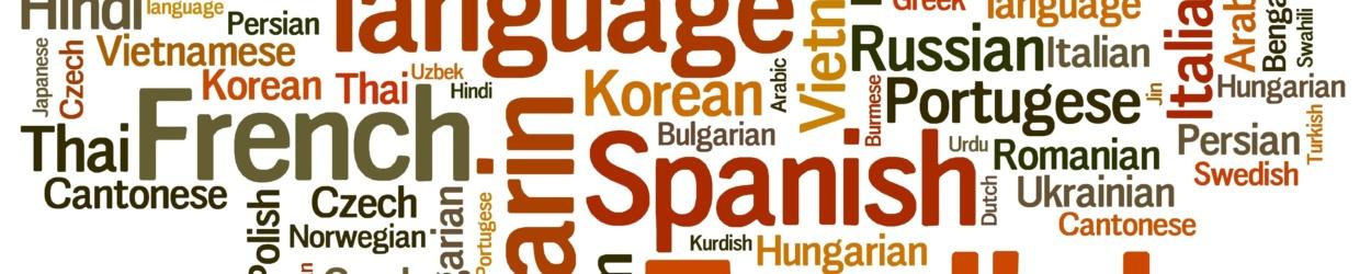 wersje językowe strony internetowej